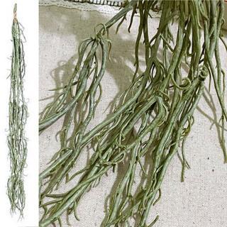 新品 オ-キッドル-ト フロストグリーン L50㎝ 垂らしグリーン 造花(その他)