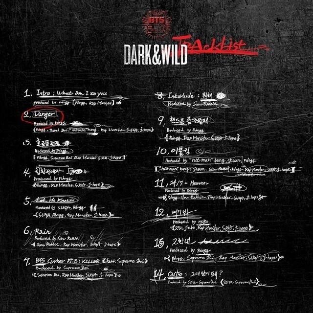防弾少年団(BTS)(ボウダンショウネンダン)のBTS dark&wild PVTV LIVE 高画質 エンタメ/ホビーのDVD/ブルーレイ(ミュージック)の商品写真