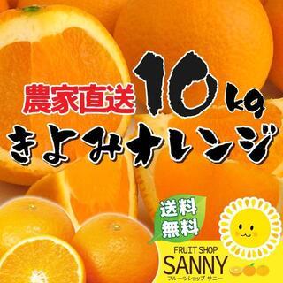 【数量限定】清見オレンジ 10kg(フルーツ)