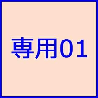 専用01(その他)