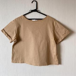 グリーンレーベルリラクシング(green label relaxing)のコットンカットソー(Tシャツ(半袖/袖なし))
