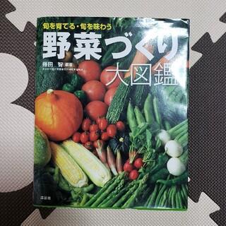 野菜づくり大図鑑 旬を育てる・旬を味わう(趣味/スポーツ/実用)