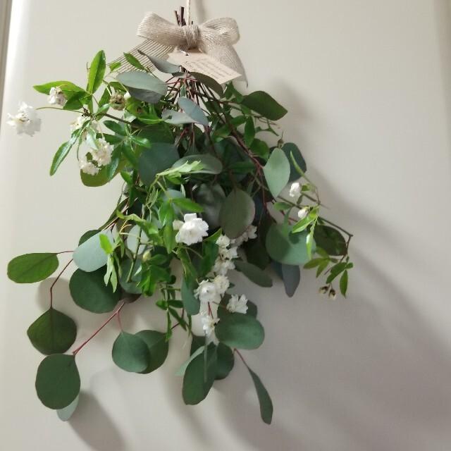 スワッグ ユーカリとモッコウバラのナチュラルスワッグ ハンドメイドのフラワー/ガーデン(ドライフラワー)の商品写真