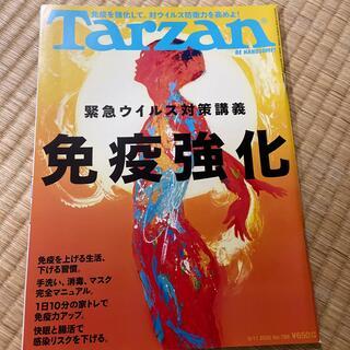 ターザン(趣味/スポーツ)