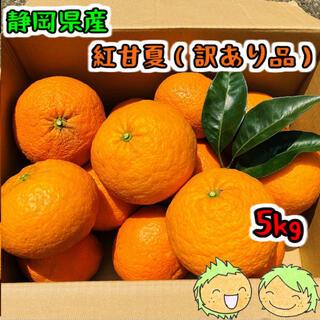 静岡県産 紅甘夏(訳あり品) 箱込5kg(フルーツ)
