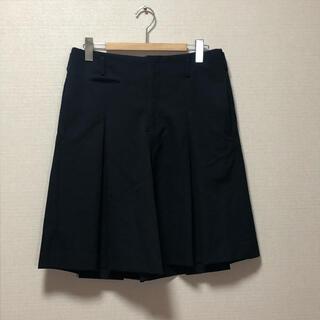 コムデギャルソンオムプリュス(COMME des GARCONS HOMME PLUS)のcomme des garcons homme plus スカートパンツ(その他)