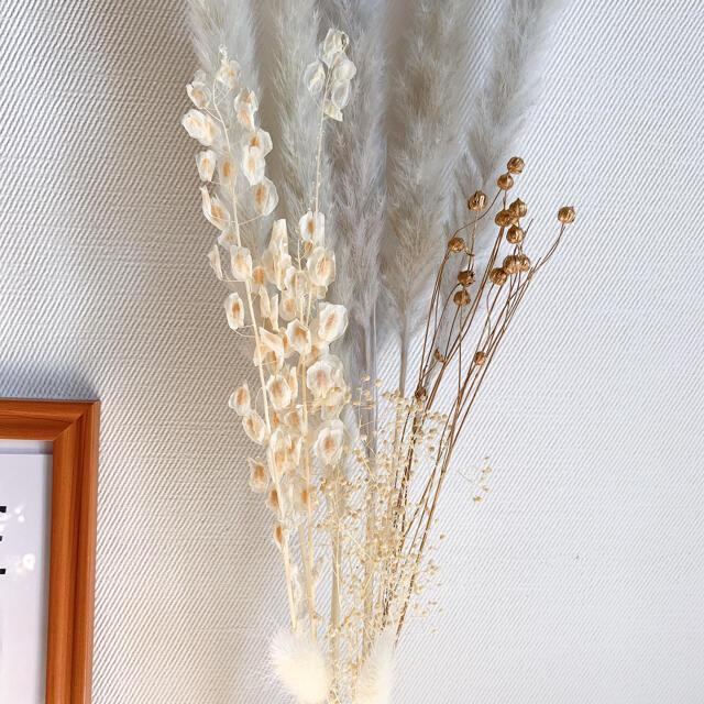 パンパスグラス テールリード グレー ホワイト 韓国インテリア ゴールド ハンドメイドのフラワー/ガーデン(ドライフラワー)の商品写真