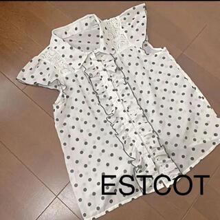 エスタコット(ESTACOT)の美品 エスタコッタ ドット柄 水玉 シアーシャツ L(シャツ/ブラウス(半袖/袖なし))