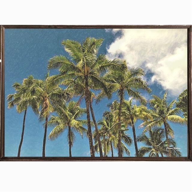 【送料無料】南国の風景☆Palm tree No.709       フレーム付 ハンドメイドのインテリア/家具(アート/写真)の商品写真