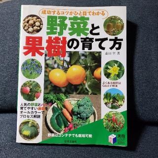 成功するコツがひと目でわかる野菜と果樹の育て方(趣味/スポーツ/実用)
