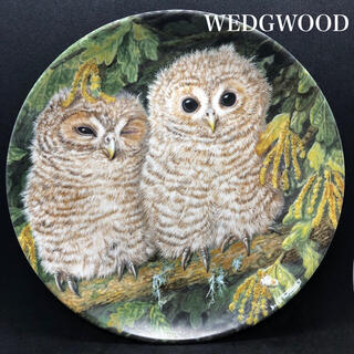 WEDGWOOD - 【美品】WEDGWOOD /The Baby Owls/皿/プレート/
