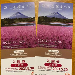 富士芝桜まつり 入園券(その他)
