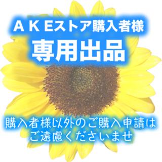 シセイドウ(SHISEIDO (資生堂))のチャコ1454様専用(その他)