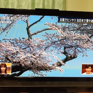 日立 - 日立 50V型地上・BS・110度CSデジタルフルハイビジョンプラズマテレビ