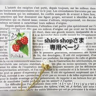 shio's shopさま専用ページ(ドライフラワー)