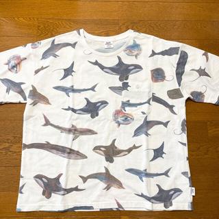 ジムマスター(GYM MASTER)のgymmaster Tシャツ(Tシャツ/カットソー(半袖/袖なし))