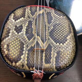 沖縄三線 蛇革 本革 民族楽器(三線)