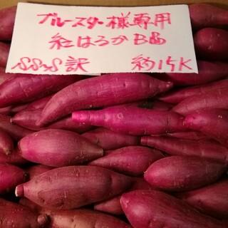 ブルースター様専用 超お得!!訳☆オーダー☆甘い貯蔵品紅はるかB品約15Kです。(野菜)