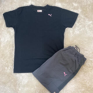 プーマ(PUMA)の美品 PUMA Tシャツ パンツ セット(セット/コーデ)
