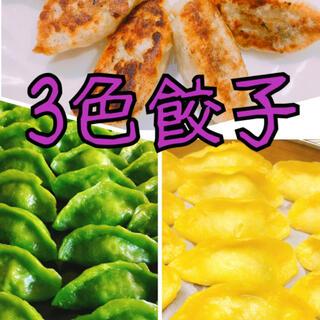 無添加3色餃子 白緑黄色 鮮やか 皮もちもち 中ジューシー 美味しい(野菜)