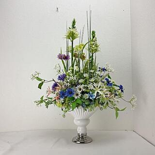 きん3様専用 みぢかに花のある時間 青いデージーの花の咲いている初夏の花薫る庭(その他)