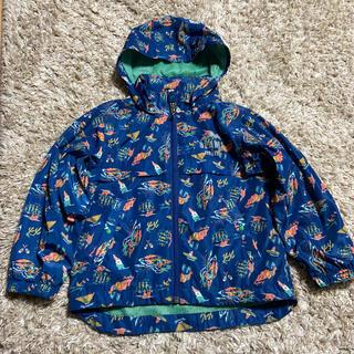コドモビームス(こどもビームス)のBEAMS mini マウンテンジャケット ナイロンジャケット(ジャケット/上着)