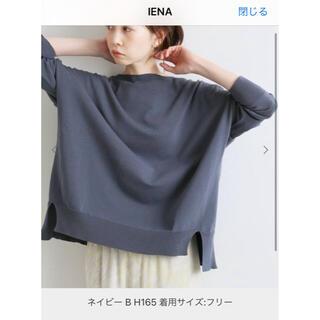 IENA - IENA コットンストレッチ  トップス