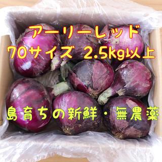 【島の大地で育った無農薬!】紫玉ねぎ 2.5kg以上 ※数量限定※(野菜)