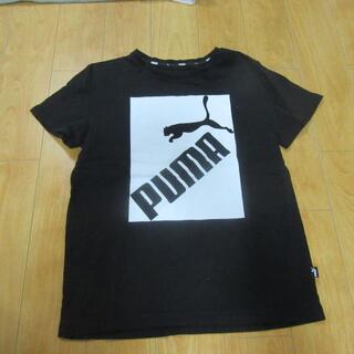 PUMA - 【男児 Tシャツ】プーマ 黒 半袖 140