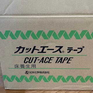 カットエース テープ(テープ/マスキングテープ)