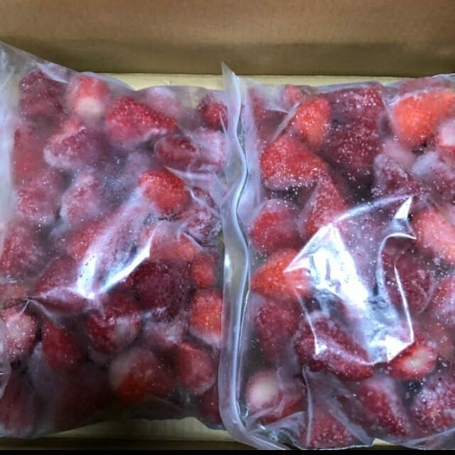 冷凍いちご約500グラム 自宅栽培 無農薬 食品/飲料/酒の食品(フルーツ)の商品写真