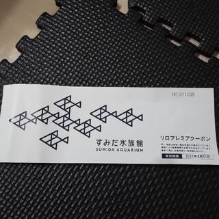 すみだ水族館 チケット(水族館)