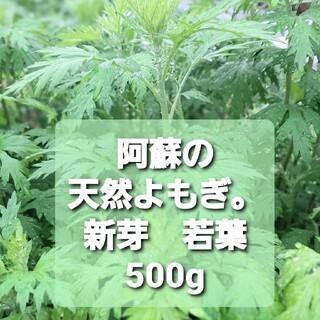 【純粋天然】阿蘇のよもぎ。500g(野菜)