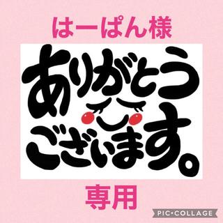専用!! フェルト☆ワッペン☆ハンドメイド(その他)