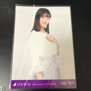 ノギザカフォーティーシックス(乃木坂46)の向井葉月 生写真(女性アイドル)