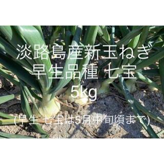 兵庫県 淡路島産 令和3年 新玉ねぎ5kg 早生品種 七宝 たまねぎ18個前後(野菜)