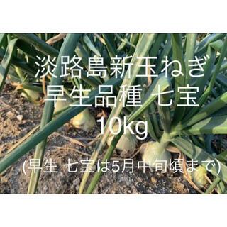 兵庫県 淡路島産 令和3年 新玉ねぎ10kg 早生品種 七宝 たまねぎ35個前後(野菜)