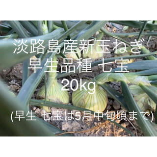 兵庫県 淡路島産 令和3年 新玉ねぎ20kg 早生品種 七宝 たまねぎ70個前後(野菜)