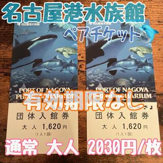 名古屋港水族館 ペアチケット 大人 2枚(水族館)