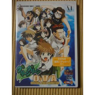 グリーングリーン OVA DVD(アニメ)