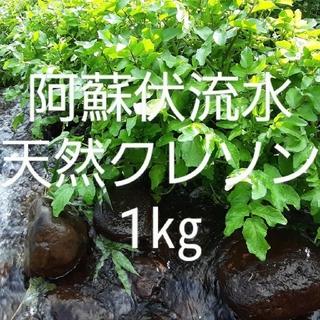 【無農薬】新鮮クレソン1㎏(野菜)