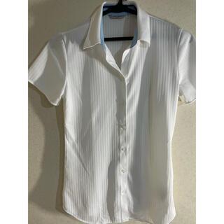 アオキ(AOKI)のAOKI シャツ(シャツ/ブラウス(半袖/袖なし))