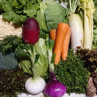 無農薬野菜セット10品80サイズ満杯(野菜)