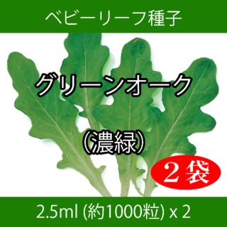 ベビーリーフ種子 B-47 グリーンオーク(濃緑) 2.5ml x 2袋(野菜)
