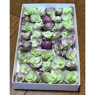 銀の紫陽花が作ったオレガノ・ケントビューティーのドライフラワー ③(ドライフラワー)