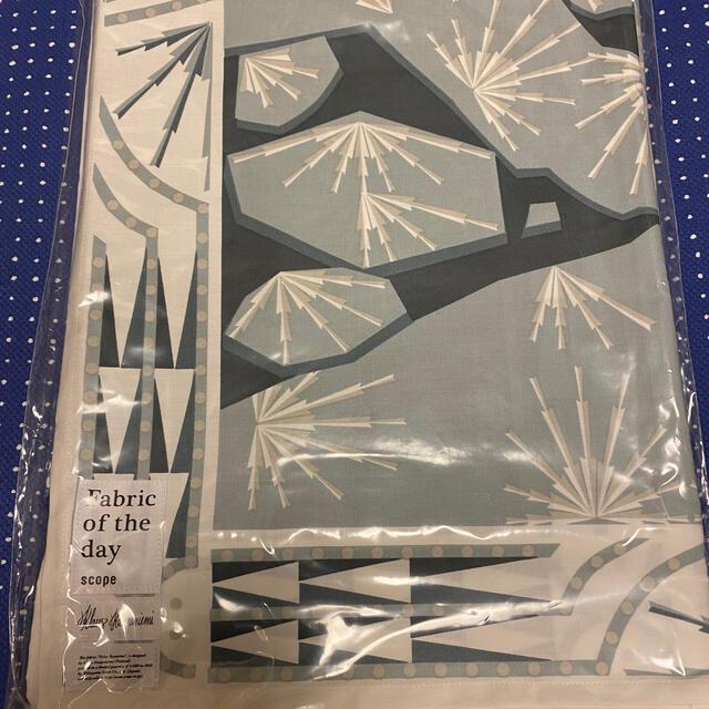 iittala(イッタラ)のSCOPE Fabric of the day Polar Byzantine インテリア/住まい/日用品のキッチン/食器(テーブル用品)の商品写真