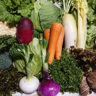 クール便無農薬野菜セット10品80サイズ満杯(野菜)