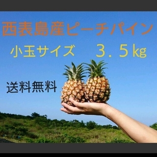 10%オフセール中!!西表島産ピーチパイン 小玉サイズ約3.5㎏(6~9玉)(フルーツ)