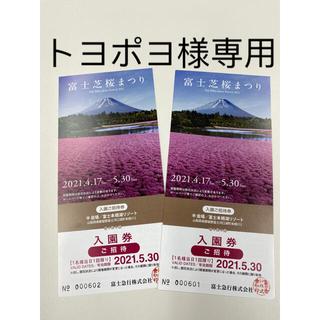 富士芝桜まつり2021 入場券 2枚(遊園地/テーマパーク)
