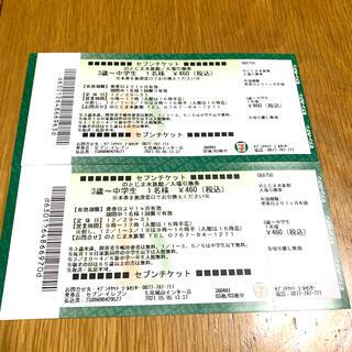 のとじま水族館 子供入場券 2枚セット(水族館)